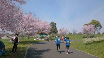 2017/04/05の颯走塾足立区舎人公園マラソン練習会3
