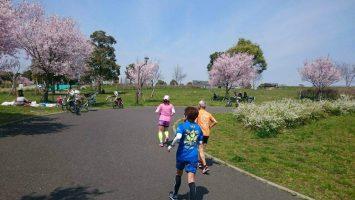 2017/04/05の颯走塾足立区舎人公園マラソン練習会4