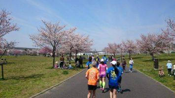 2017/04/05の颯走塾足立区舎人公園マラソン練習会5