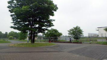 2017/06/28の舎人公園工事状況1
