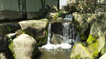 見沼代親水公園3