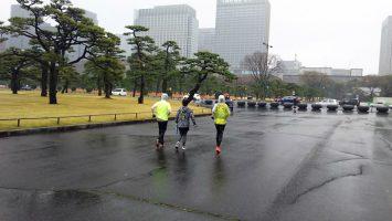 2018/03/21の颯走塾水曜マラソン練習会in皇居3