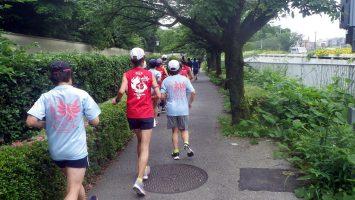 2018/05/30の颯走塾水曜マラソン練習会in皇居2