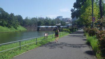 2018/09/05の颯走塾水曜マラソン練習会in皇居1