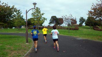 2018/11/07の颯走塾水曜マラソン練習会in舎人公園5