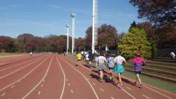 2018/11/21の颯走塾水曜マラソン練習会in織田フィールド1
