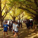 2018/11/28の颯走塾水曜マラソン練習会in東宮4