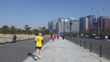 2019/02/20の颯走塾水曜マラソン練習会in皇居4