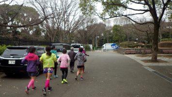2019/02/27の颯走塾水曜マラソン練習会in織田フィールド1