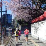 2019/03/13の颯走塾水曜マラソン練習会in東宮1