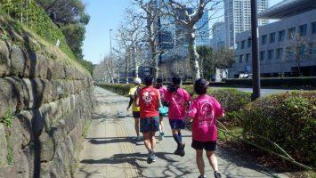 2019/03/13の颯走塾水曜マラソン練習会in東宮7