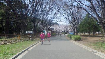 2019/03/27の颯走塾水曜マラソン練習会in織田フィールド6
