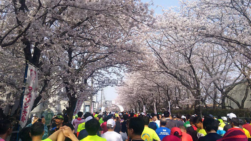 2019/04/07幸手市さくらマラソンにて2