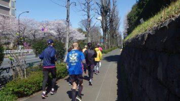 2019/04/03の颯走塾水曜マラソン練習会in東宮2