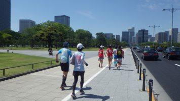 2019/05/22の颯走塾水曜マラソン練習会in皇居1