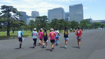 2019/05/22の颯走塾水曜マラソン練習会in皇居8