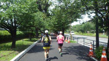 2019/06/26の颯走塾水曜マラソン練習会in皇居4