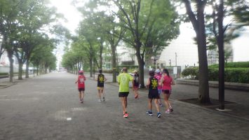 2019/07/24の颯走塾水曜マラソン練習会in織田フィールド9
