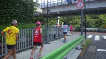 2019/09/25の颯走塾水曜マラソン練習会in東宮7