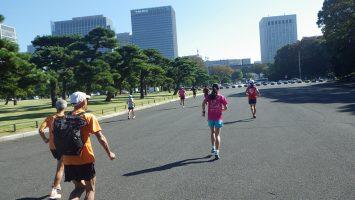 2019/11/06の颯走塾水曜マラソン練習会in皇居3