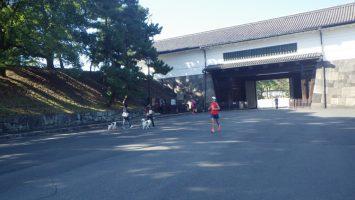 2019/11/06の颯走塾水曜マラソン練習会in皇居4