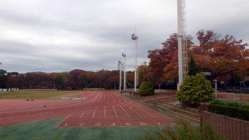2019/11/13の織田フィールド