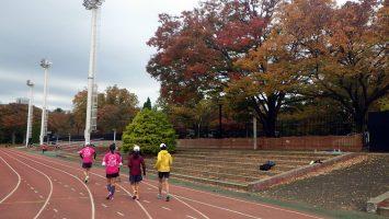 2019/11/13の颯走塾水曜マラソン練習会in織田フィールド1