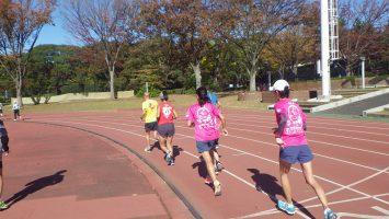 2019/11/20の颯走塾水曜マラソン練習会in織田フィールド3