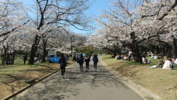 2020/03/25の代々木公園