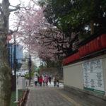 2020/03/04の颯走塾水曜マラソン練習会in神宮外苑1